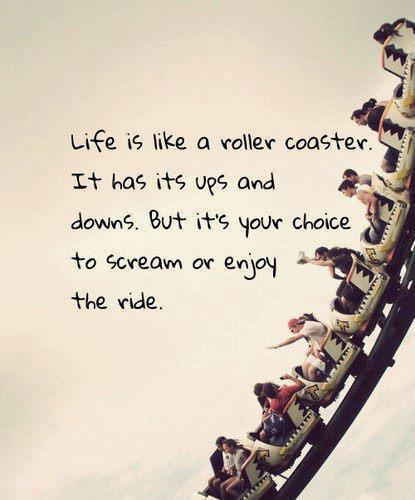 Life Is Like A Roller Coaster It Has Its Ups And Downs But It S Your Choice To Scream Or Enjoy The Ride Life Quote Quotespictures Com