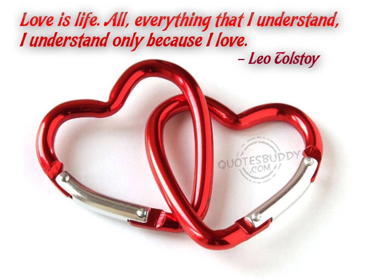 ... That I Understand. I Understand Only Because I Love ~ Love Quote