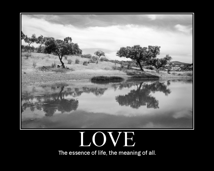 Love The Essence Of Life The Meaning Of All Love Quote Awesome The Meaning Of Love Quotes