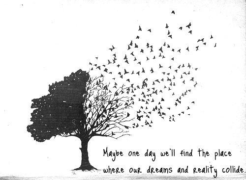 Maybe One Day We'll Find The Place Where Our Dreams And Reality Extraordinary Life Quote Of The Day