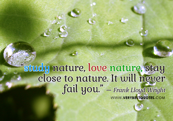 study nature love nature stay close to nature it will