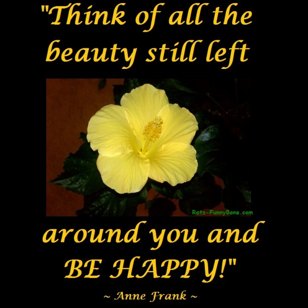 think of all the beauty still left around you be happy