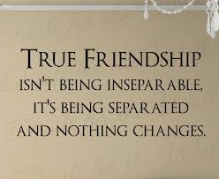Quotes About Honesty In Friendship Fascinating Honesty Quotes Pictures And Honesty Quotes Images  5