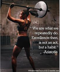 """""""We are What We Repeatedly Do.Excellence then Is Not an Act,but a Habit"""" ~ Health Quote"""