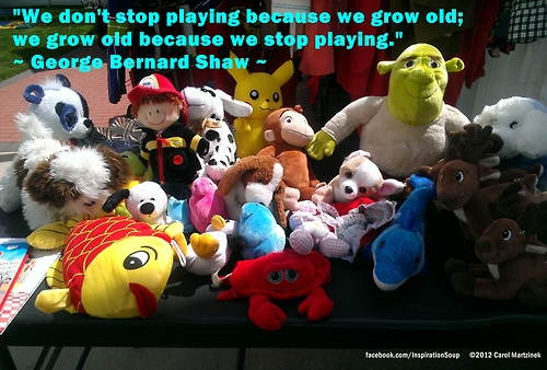 """We Don't Stop Playing because We Grow Old,We Grow Old Because We Stop Playing"" ~ Joy Quote"