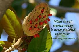 What Is Not Started Today Is Never Finished Tomorrow ~ Hope Quote