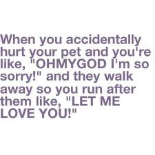 """When You Accidentally Hurt Your Pet and You're Like,""""OHMYGOD I'm So Sorry! and They Walk Away So You Run After Them Like,""""Let Me Love You!"""" ~ Laughter Quote"""