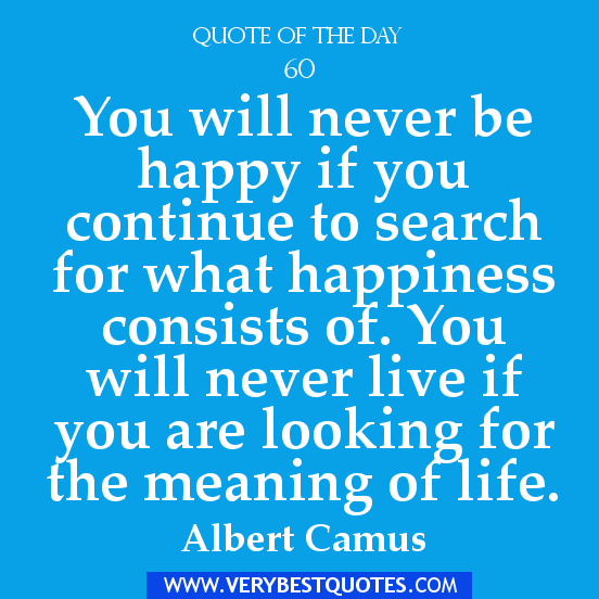 ... never-live-if-you-are-looking-for-the-meaning-of-life-happiness-quote