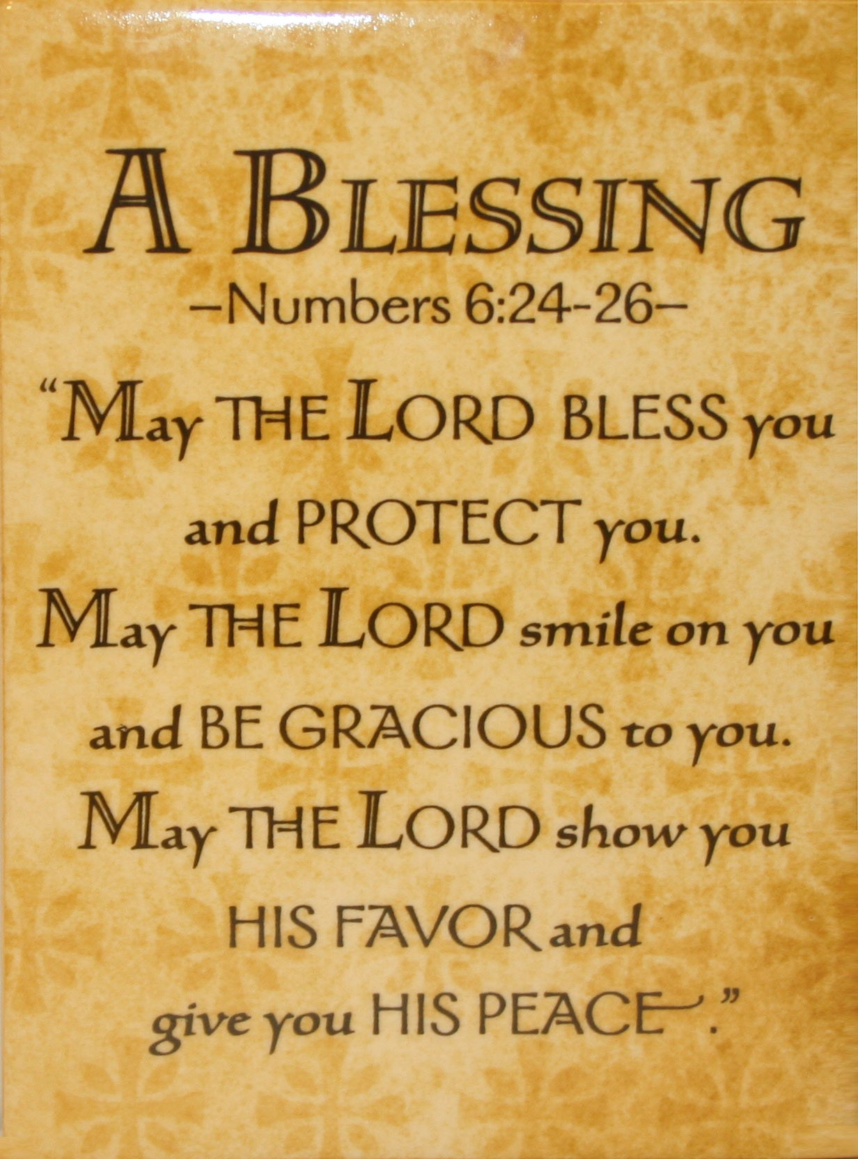You Are A Blessing Quotes A Blessing May The Lord Bless You And Protect Youmay The Lord
