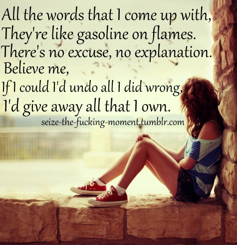 """ All The Words That I Come Up With, They'e Like  Gasoline On Flames. There's No Excuse, No Explanation. Believe Me, If I Could I'd Undo All I Did Wrong. I'd Give Away All That I Own ""   ~ Sorry Quote"