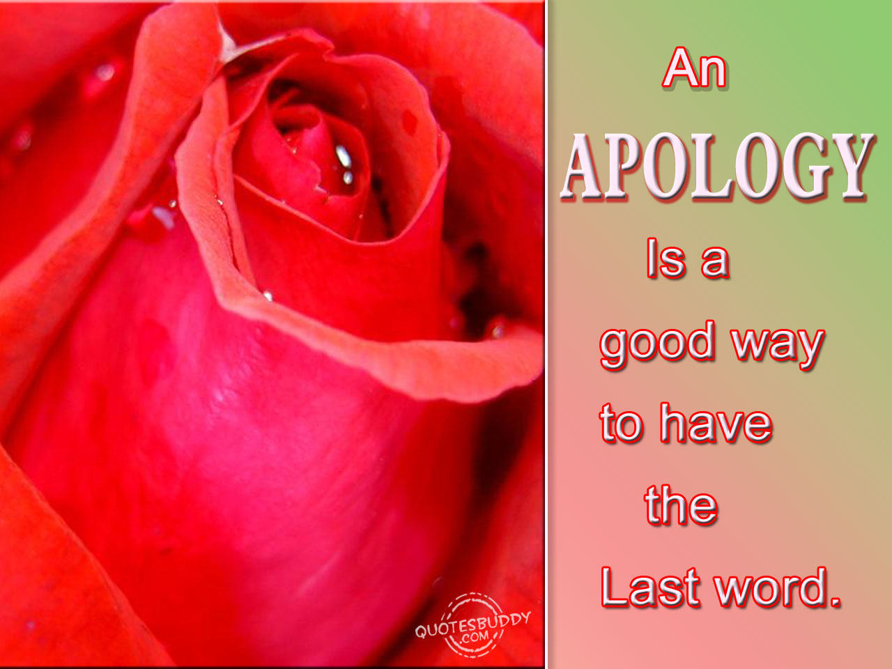 """ An Apology Is A Good Way To Have The Last Word ""  ~ Sorry Quote"