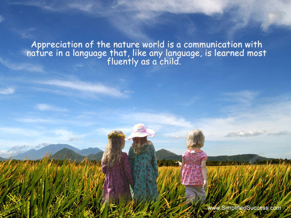 Appreciation Of The Nature World Is A Communicate With Nature In A