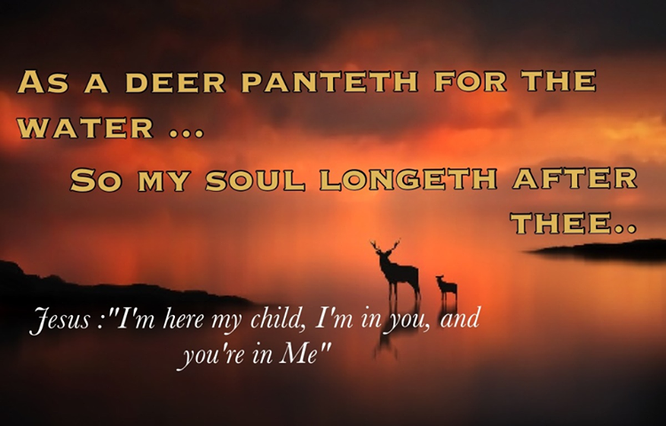 As A Deer Panteth For The Water, So My Soul Longeth After
