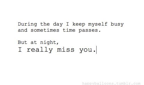 During The Day I Keep Myself Busy And Sometimes Time Passes. But At Night, I Really Miss You ~ Missing You Quote