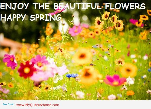 Enjoy the beautiful flowers happy spring quotespictures enjoy the beautiful flowers happy spring mightylinksfo