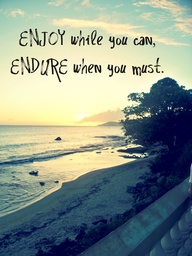 Enjoy While You Can, Endure When You Must U201d ~ Summer Quote