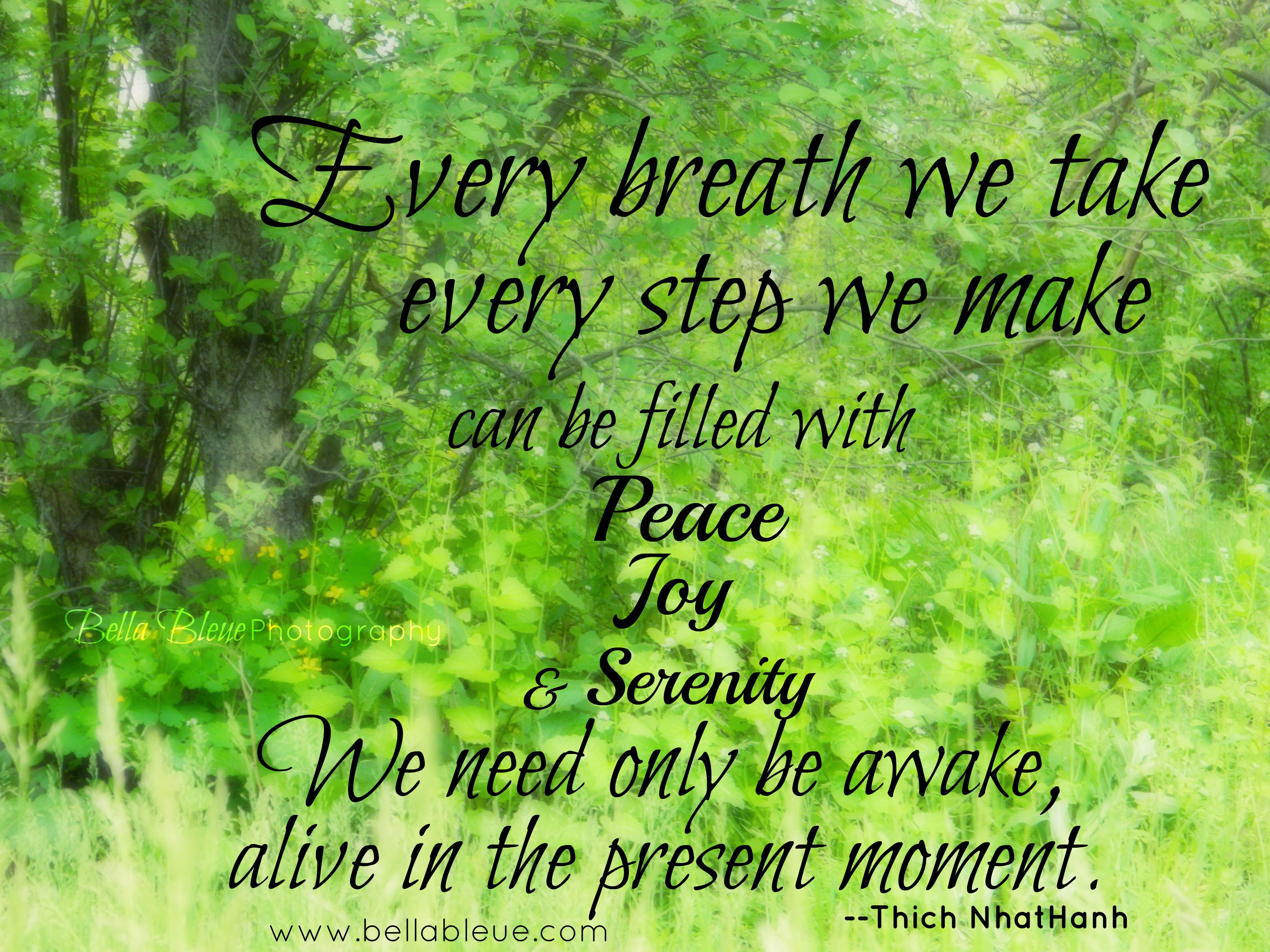 every-breath-we-take-every-step-we-make-can-be-filled-with-peace-joy-and-serenity-we-need-only-be-awake-alive-in-the-present-moment-thich-nhat-hanh-spring-quote.jpg
