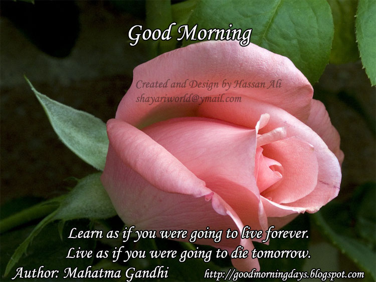 Good Morning Quotes By Mahatma Gandhi : Good morning learn as if you were going to live forever