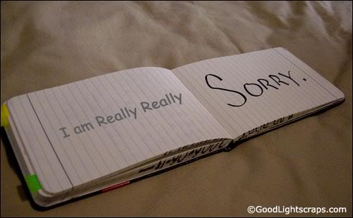 i am really really sorry quotespictures com