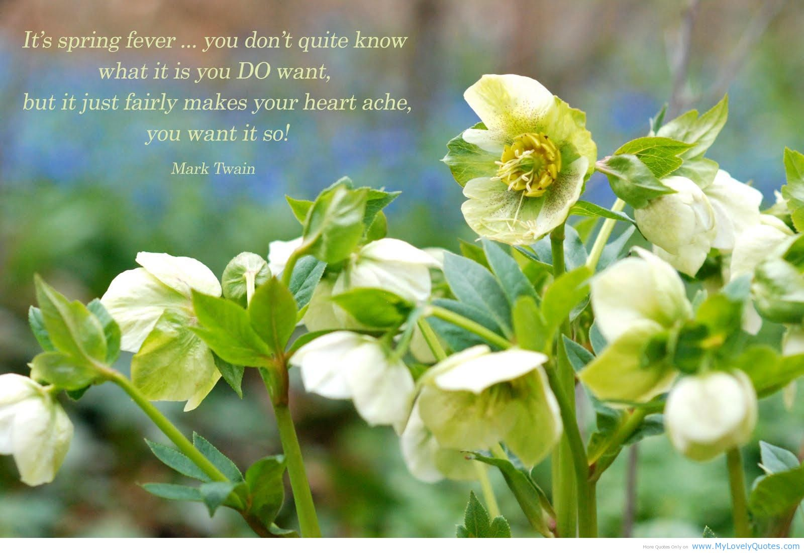 If You Want To Know Where Your Heart Is Look Where Your: Spring Fever Quotes. QuotesGram
