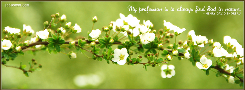 My Profession Is To Always Find God In Nature U201d   Henry David Thoreau ~