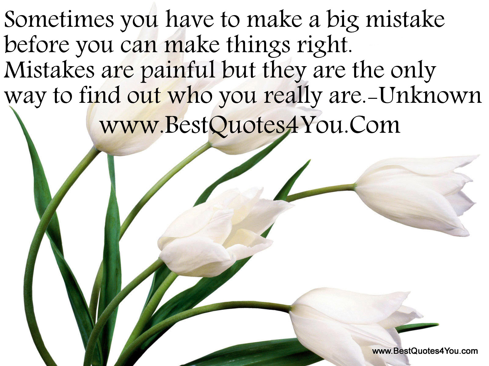 Sometimes You Have To Make A Big Mistake Before You Can Things Right.  Mistakes