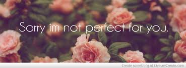 """"""" Sorry I'm Not Perfect For You """""""