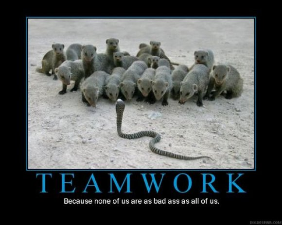 Teamwork Quotes Pictures And Teamwork Quotes Images With Message 12