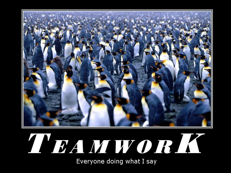 Teamwork Everyone Doing What I Say Quotespictures Com