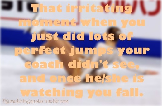 """ That Irritating Moment When You Just Did Lots Of Perfect Jumps Your Coach Didn't See, And Once He, She Is Watching You Fall ""   ~ Safety Quote"
