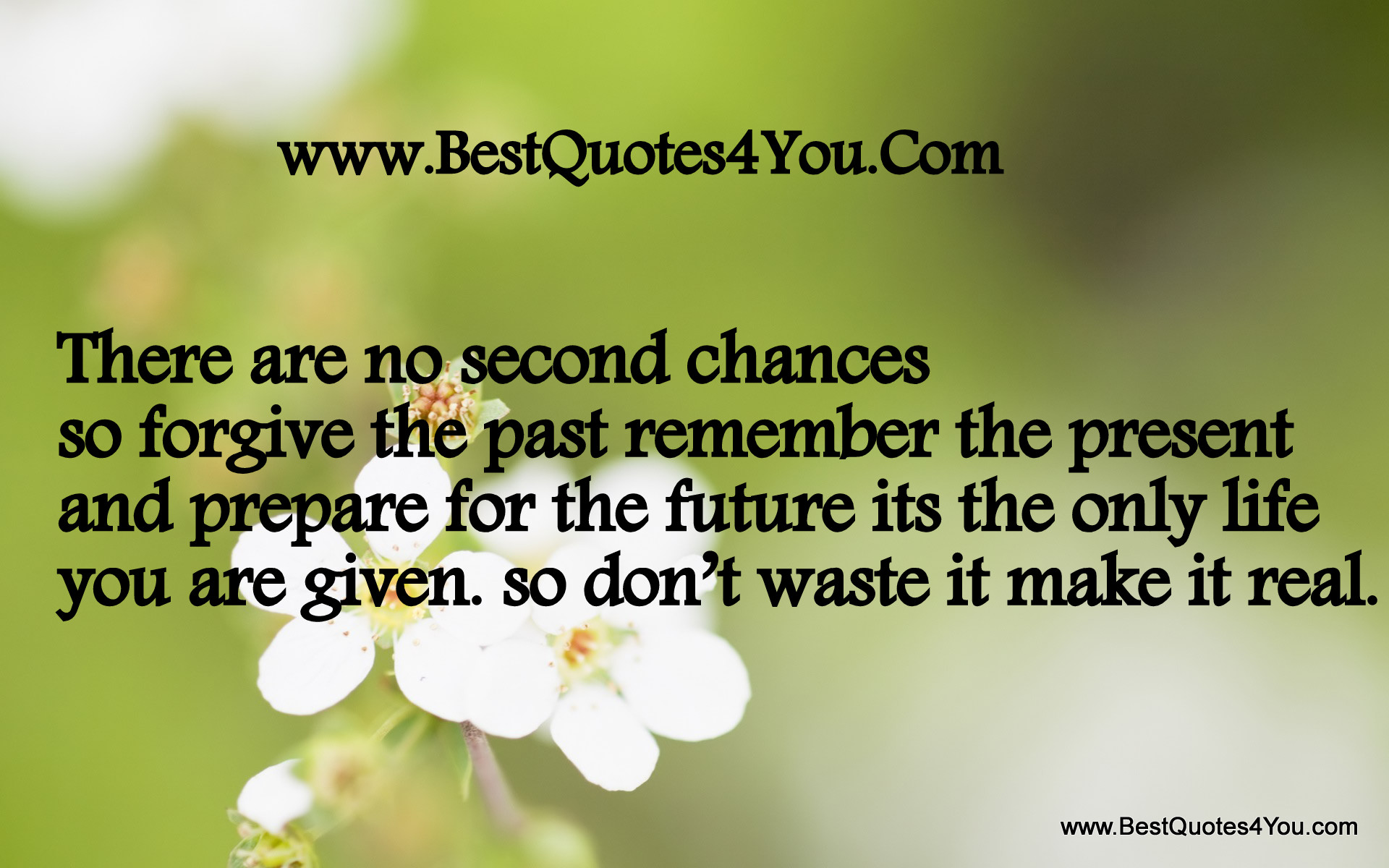 second chance in life essay While there are no do-overs in lifethere are second chances to be had while there are no do-overs in life how about giving yourself a second chance.