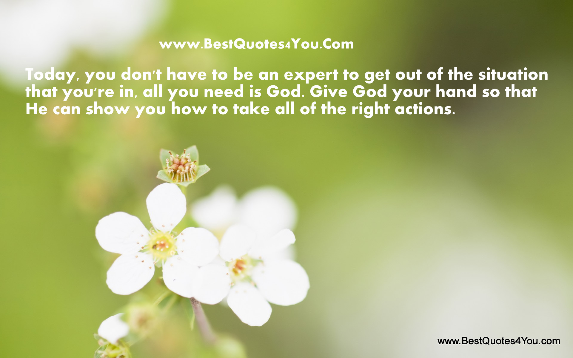 Today, You Donu0027t Have To Be An Expert To Get Out Of