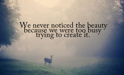 Quotes about nature beauty and life