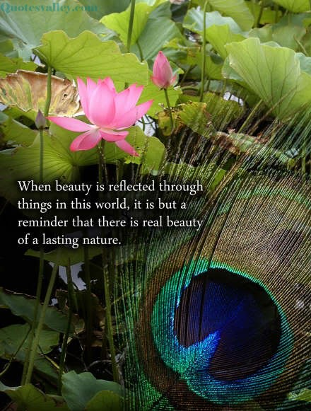 When Beauty Is Reflected Through Things In This World It Is But A Reminder That There Is Real Beauty Of A Lasting Nature Quotespictures Com