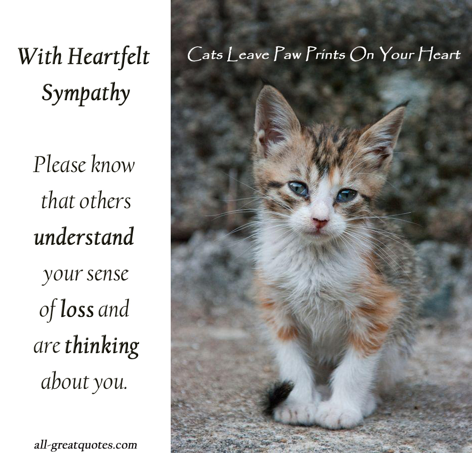 With Heartfelf Sympathy, Please Know That Others Understand ...