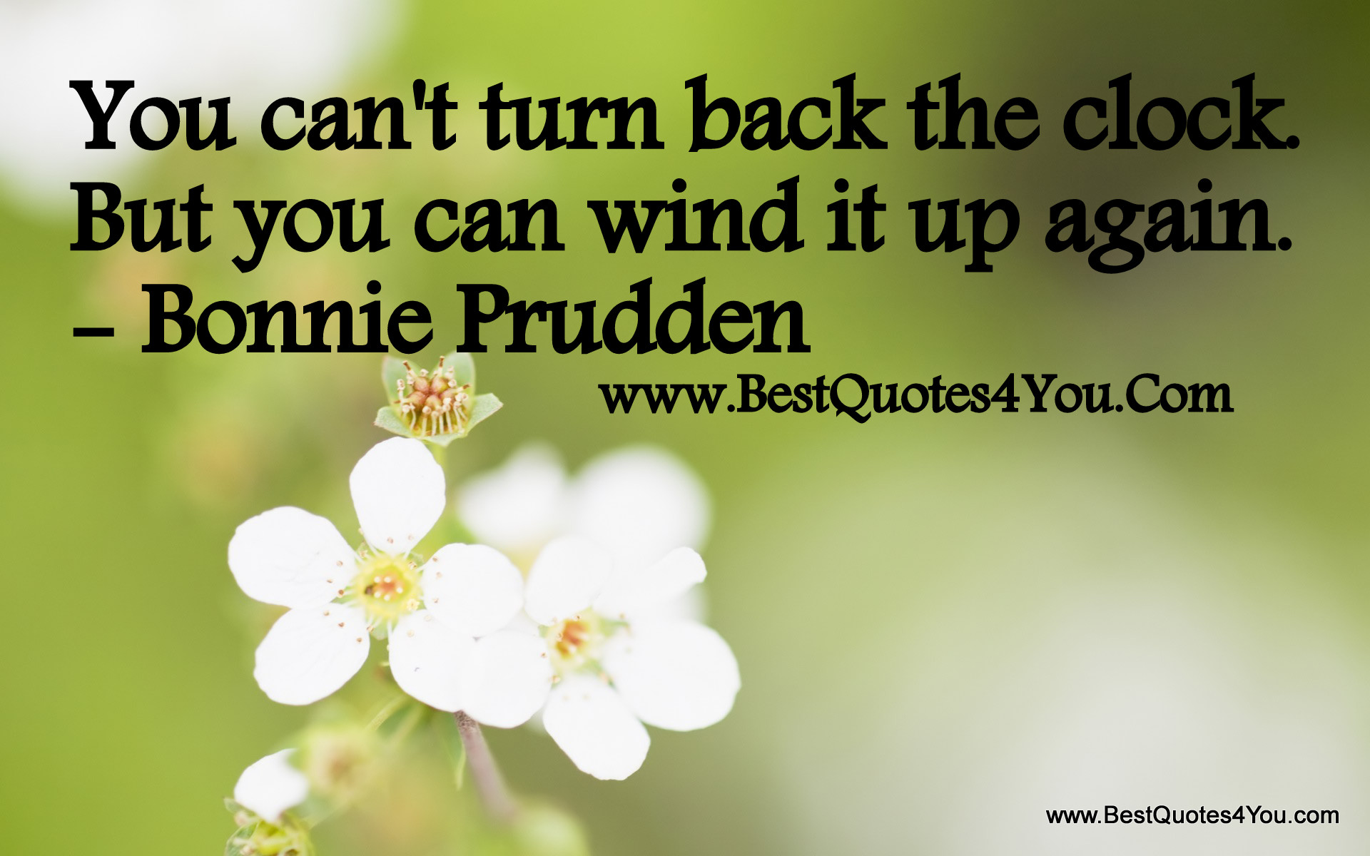 """ You Can't Turn Back The Clock. But You Can Wind It Up Again "" - Bonnie Prudden   ~ Spring Quote"