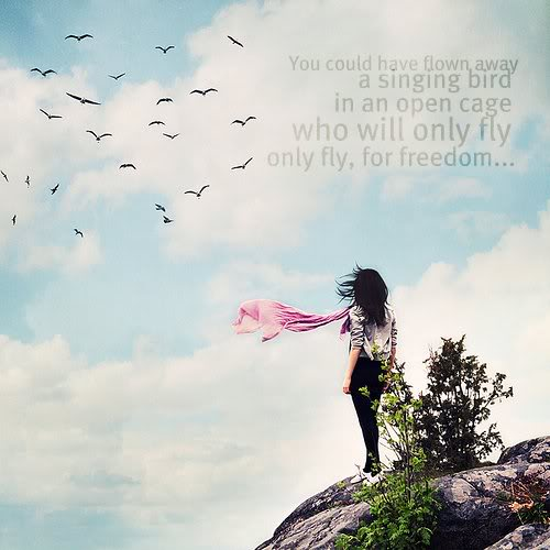 """ You Could Have Flown Away A Singing Bird In An Open Cage Who Will Only Fly Only Fly, For Freedom ""  ~ Spring Quote"