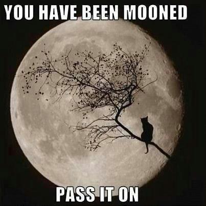 """ You Have Been Mooned Pass It On "" ~ Nature Quote"