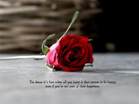 """ You Know It's Love When All You Want Is That Person To Be Happy, Even If You're Not Part Of Their Happiness ""   ~ Sad Quote"
