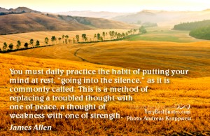 """ You Must Daily Practice The Habit Of Putting Your Mind At Rest. Going Into The Silence…   ~ Peace Quote"