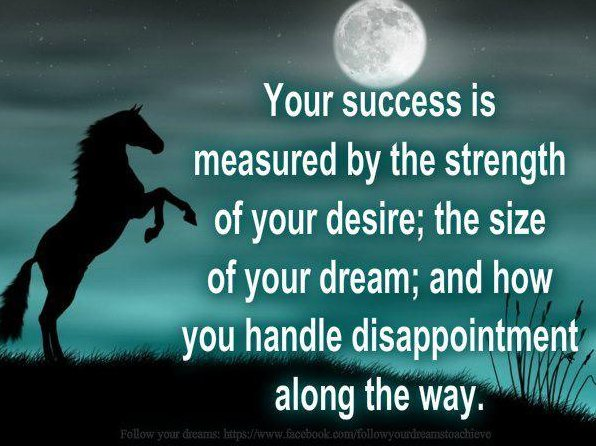 """ Your Success Is Measured By The Strength Of Your Desire, The Size Of Your Dream And How You Handle Disappointment Along The Way """