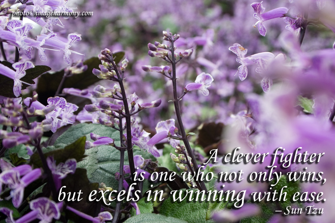 A Clever Fighter Is One Who Not Only Wins, But Excels In Winning With Ease