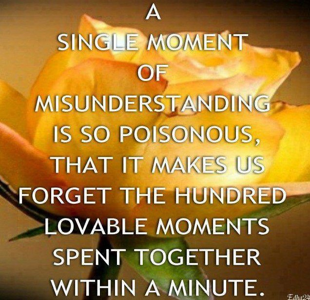 A Single Moment Of Misunderstanding Is So Poisonous, That It Makes Us Forget The Hundred Lovable Moments Spent Together