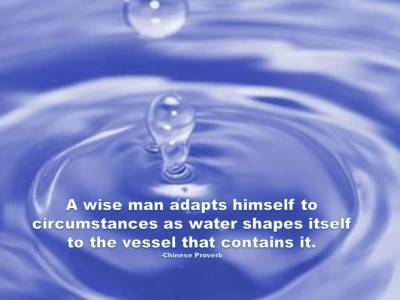 A Wise Man Adapts Himself To Circumstances As Water Shapes Itself To The Vessel That Contains It