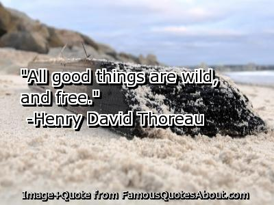 """All Good Things Are Wild, And Free"""