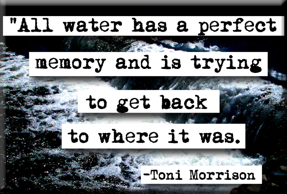 """""""All Water Has A Perfect Memory And Is Trying To Get Back To Where It Was"""""""