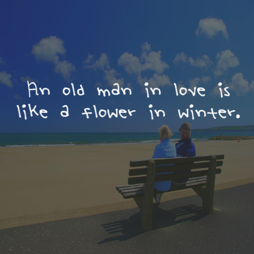 An Old Man In Love Is Like A Flower In Winter