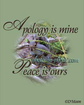 Apology Is Mine Peace Is Ours ~ Aplology Quotes