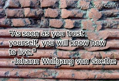 """""""As Soon As You Trust Yourself, You Will Know How To Live"""""""