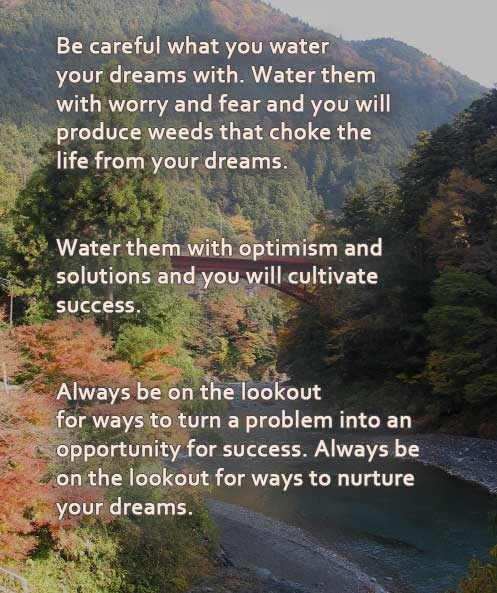 Be Careful What You Water Your Dreams With